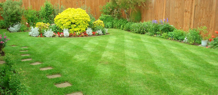 gardening services Middlesbrough
